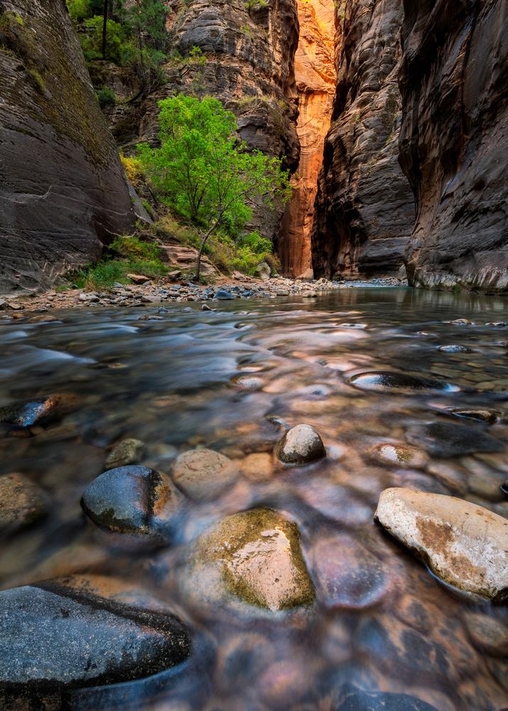 Canyon Reflected Glow by Dan McCloud