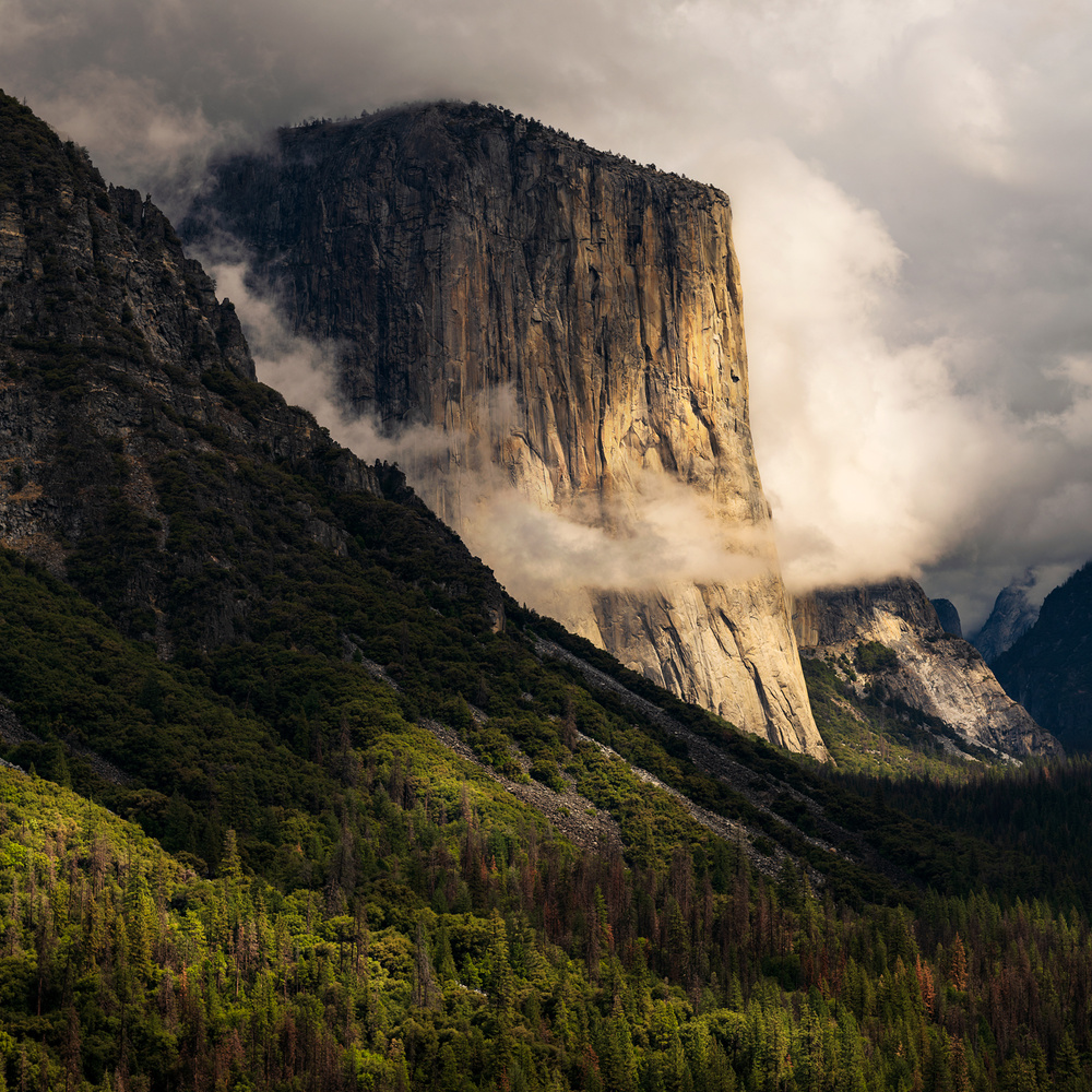 El Capitan in the Sun by Daniel McCloud