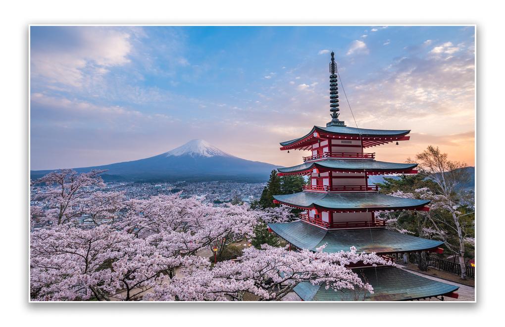 Spring Dreaming by Musashi Sakazaki
