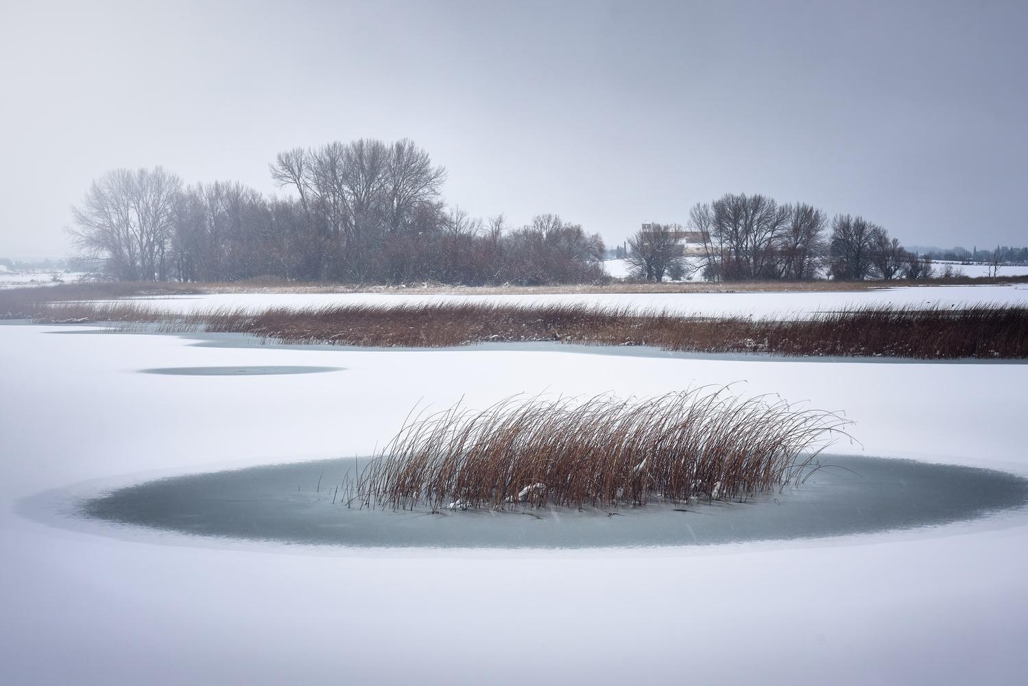 Frozen lagoon by Ricardo Gayan