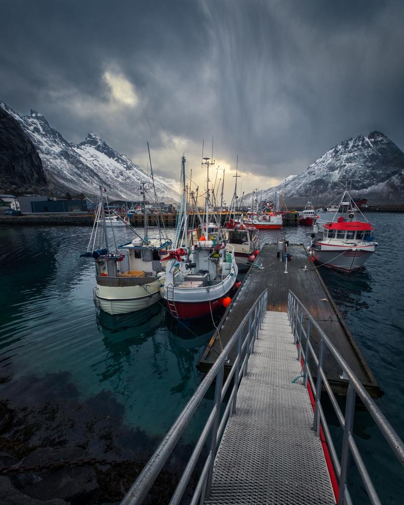 Norwegian Harbor by Ricardo Gayan