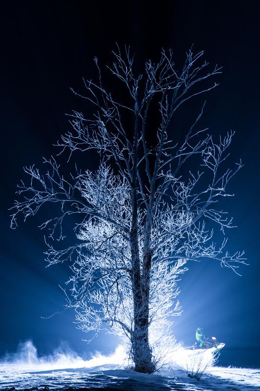 Blue Moon by Brendon Fidek