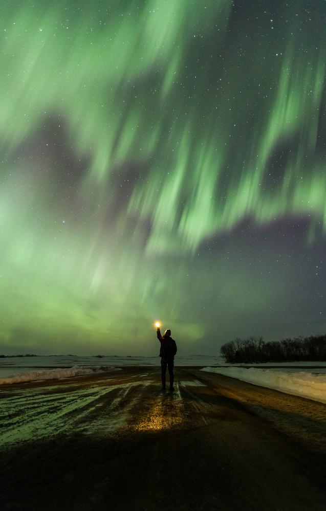 Lights by Brendon Fidek