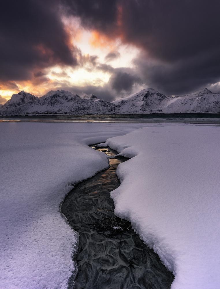 The Creek by Mikkel Beiter