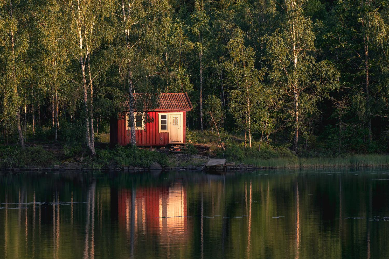 Summer Nights by Mikkel Beiter