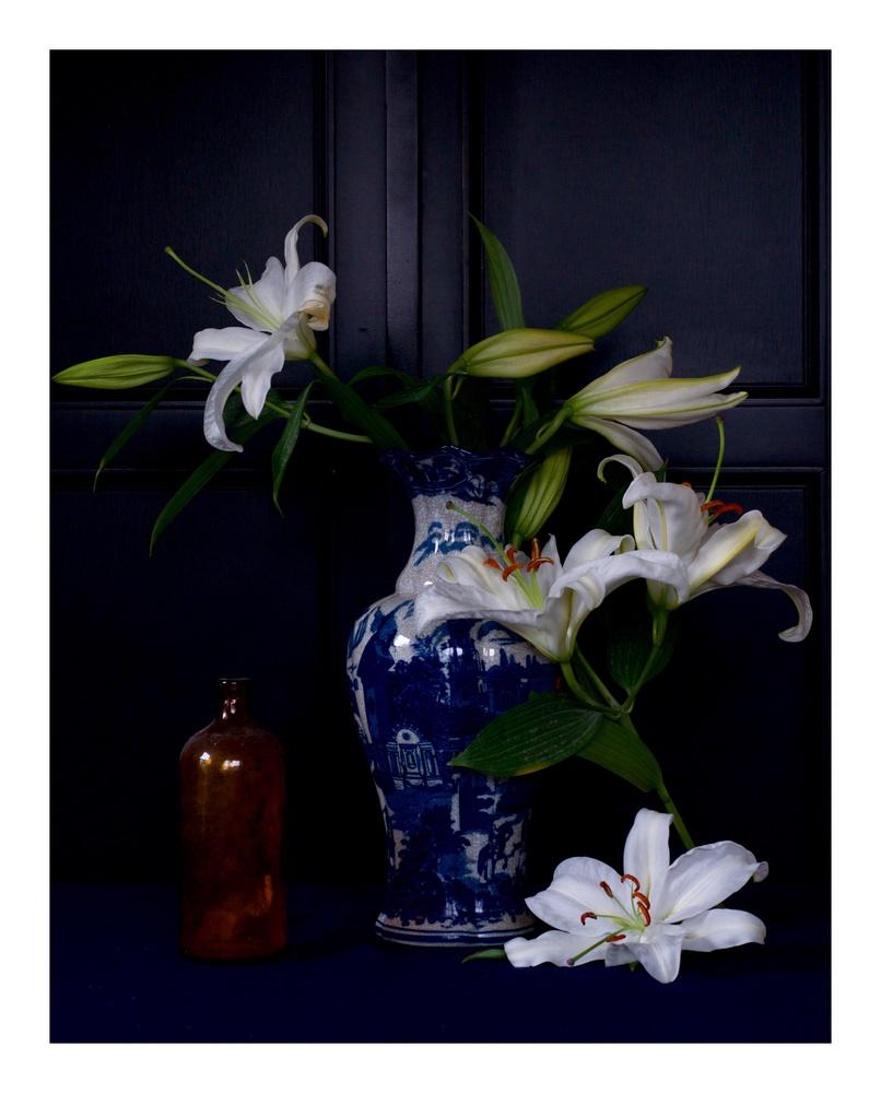 Lilies by Michael Sneeringer Jr