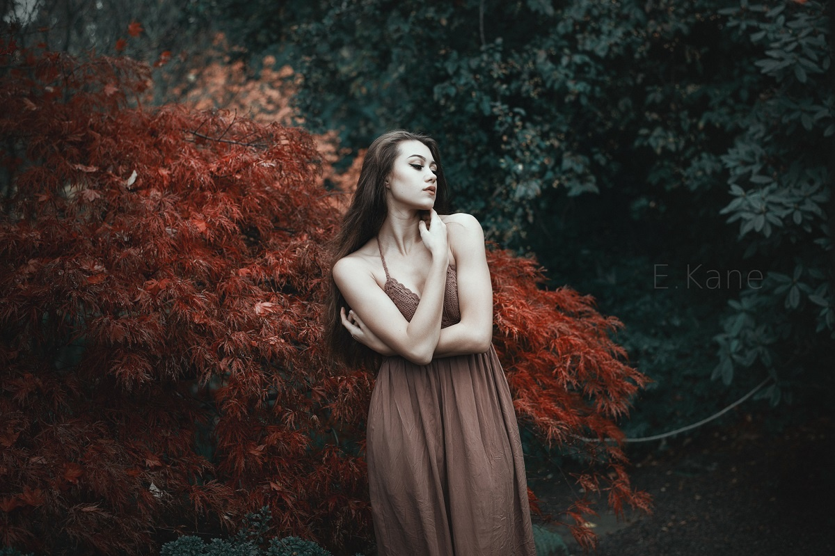Elisha by Evan Kane