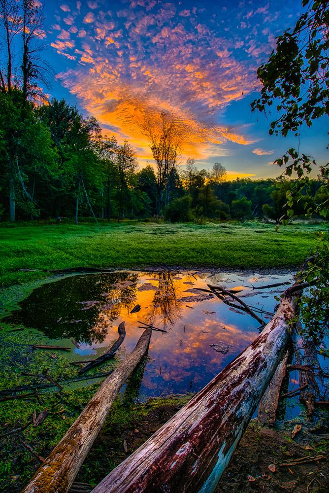 Shrinking Pond Sunrise by David Peruzzini