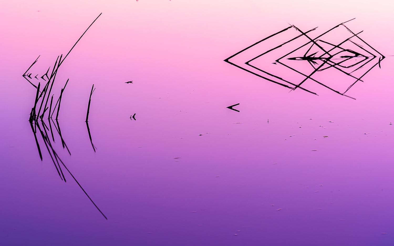 Pre Dawn Colors by David Peruzzini