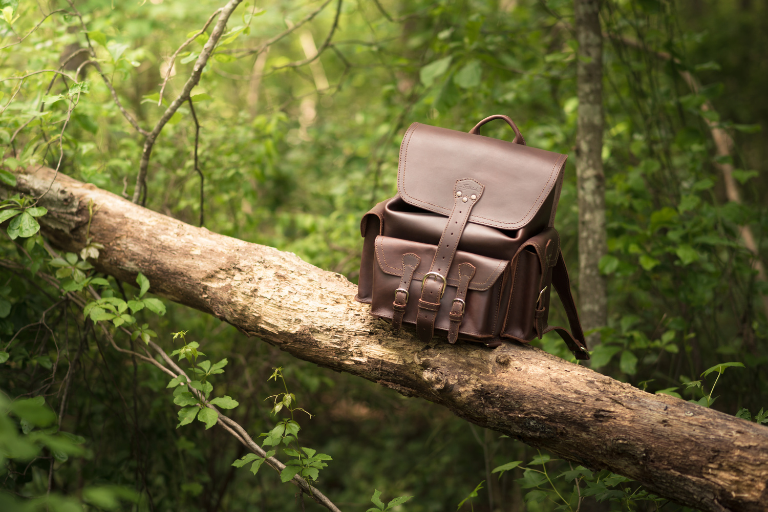 Saddleback Leather Medium Front Pocket Backpack by Zachary Shenal