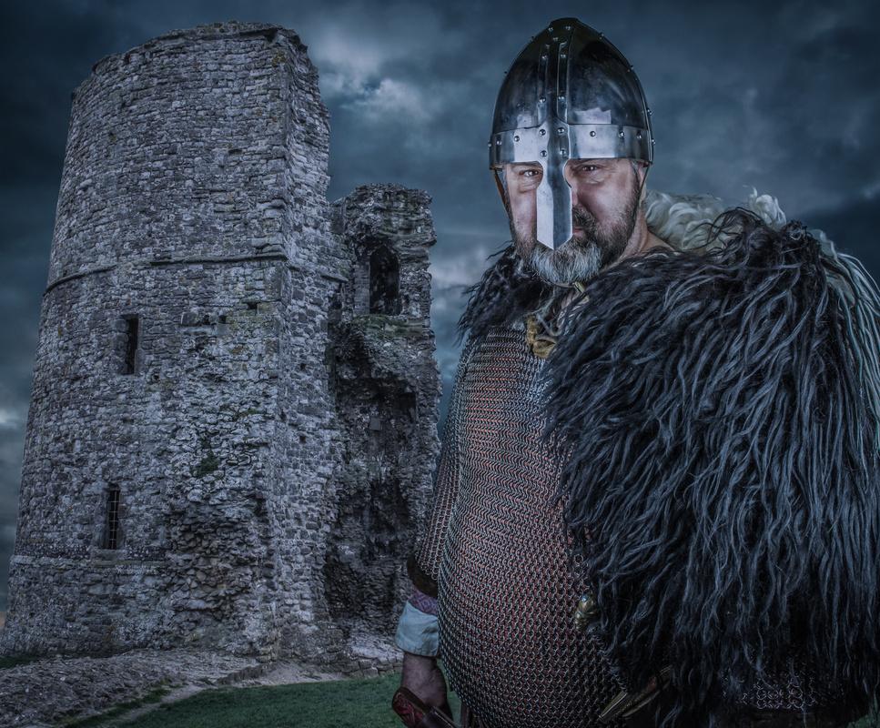 Viking  by Darrin Stripe