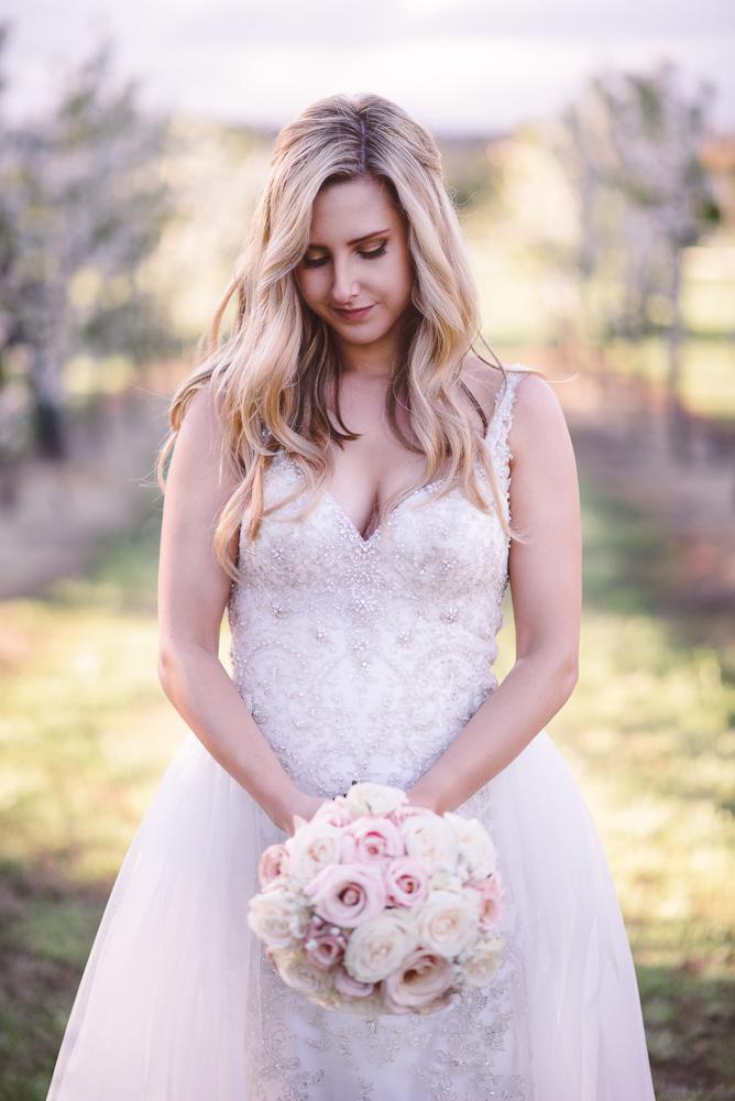 Bridal Portrait Vineyard by Matt Robertson