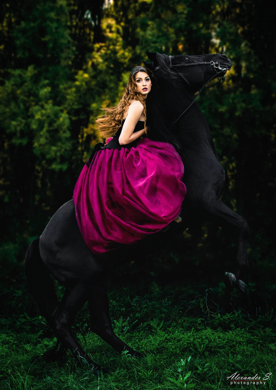 Dancing With Horses by Alexander S