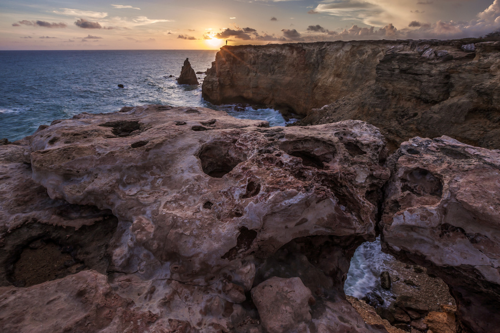 Rock lions kissing at sunset by Andrea Torselli