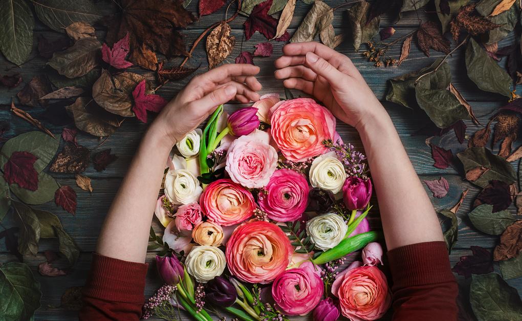 Against autumn by Dina Belenko