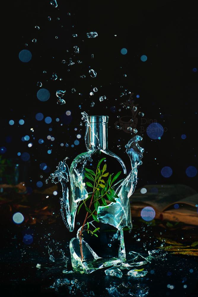 Bottle full of spring by Dina Belenko