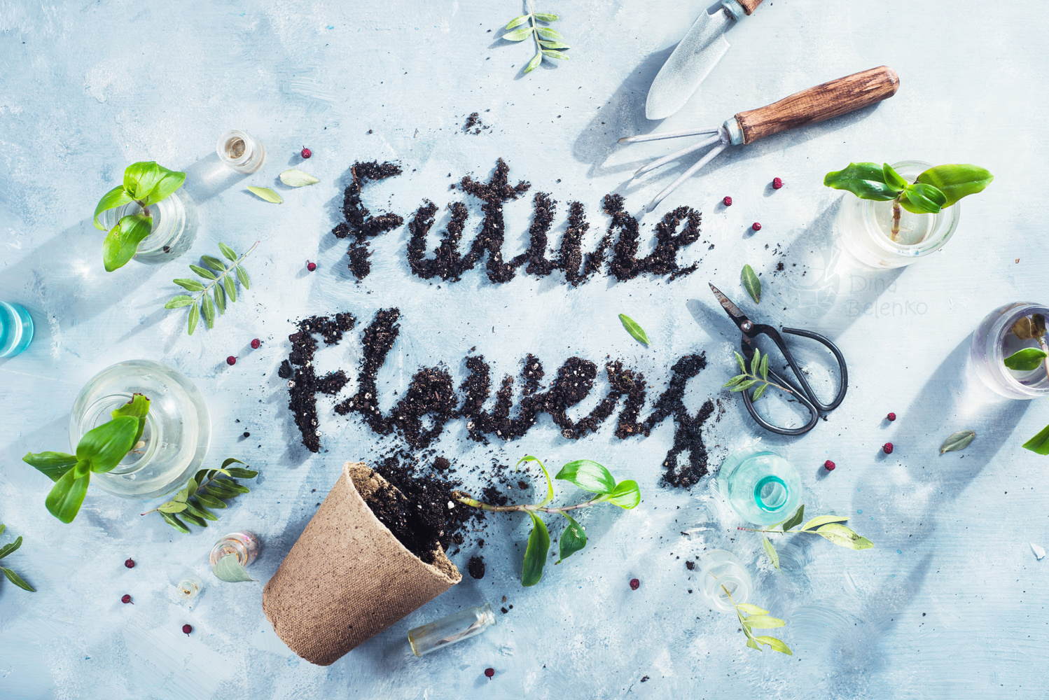Future flowers by Dina Belenko
