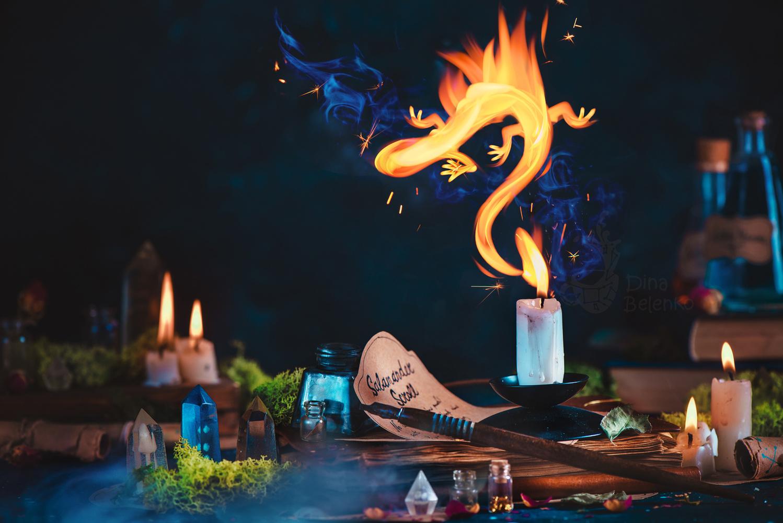Salamander Spell  by Dina Belenko