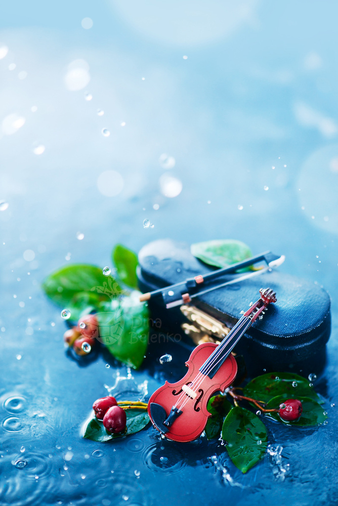 Rain Music (Violin) by Dina Belenko