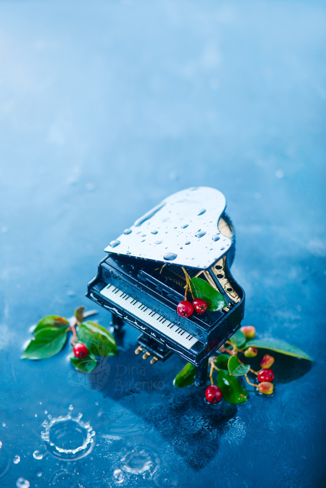 Rain Music (Piano) by Dina Belenko
