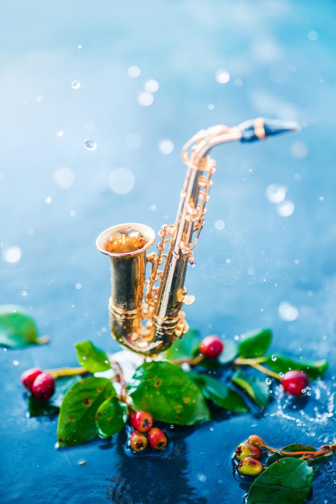 Rain Music (Sax) by Dina Belenko