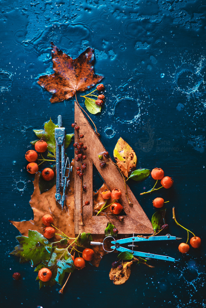 Autumn Geometry by Dina Belenko
