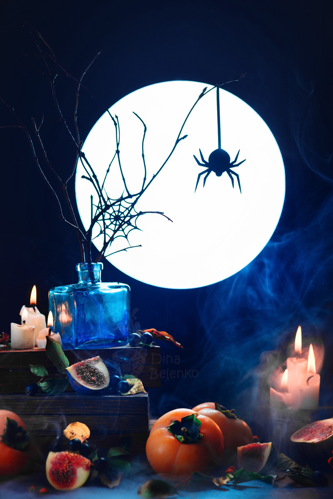 Among dust and candles (Spider Still LIfe) by Dina Belenko