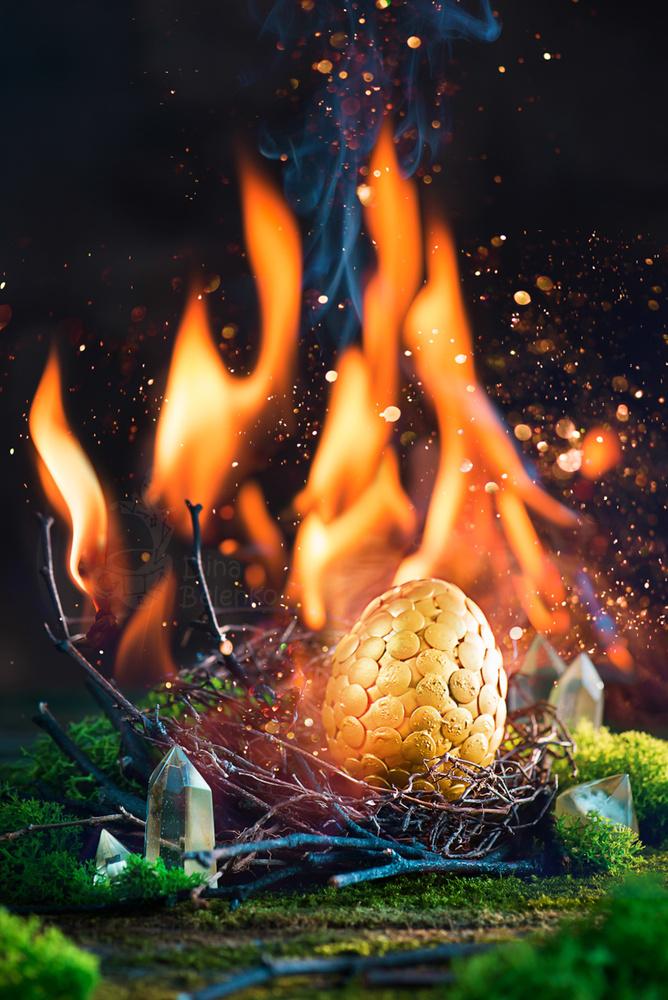 Golden Dragon by Dina Belenko