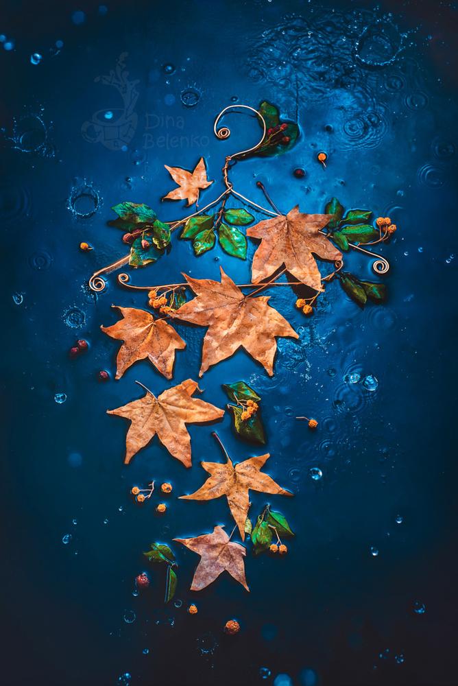 Autumnwear by Dina Belenko