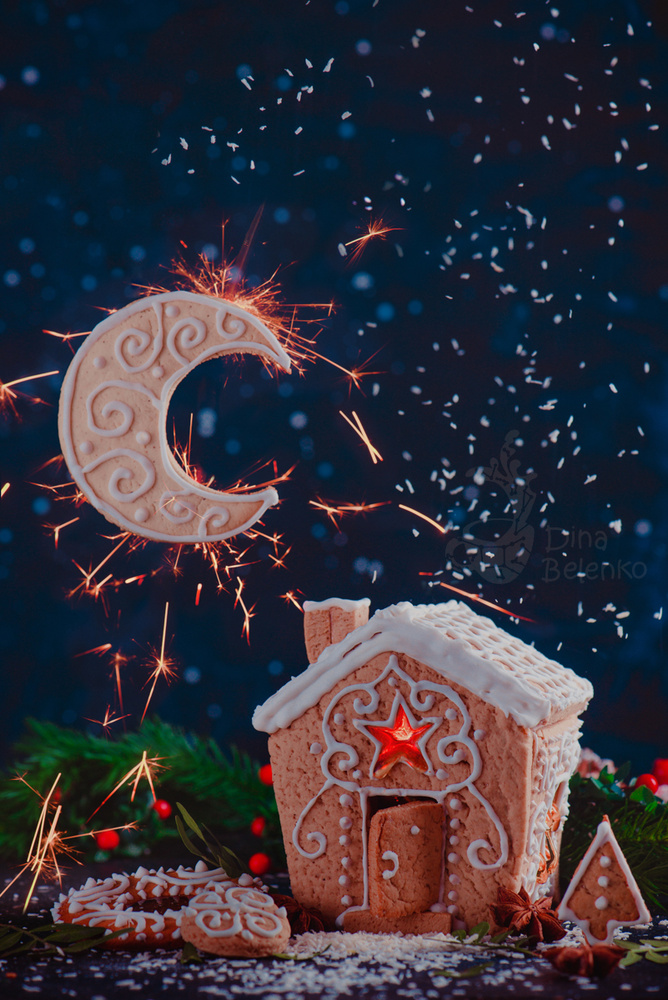 Sparkler Moon by Dina Belenko