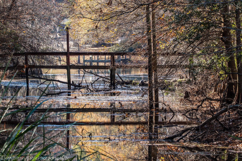 The Dock by Gerald Bilton