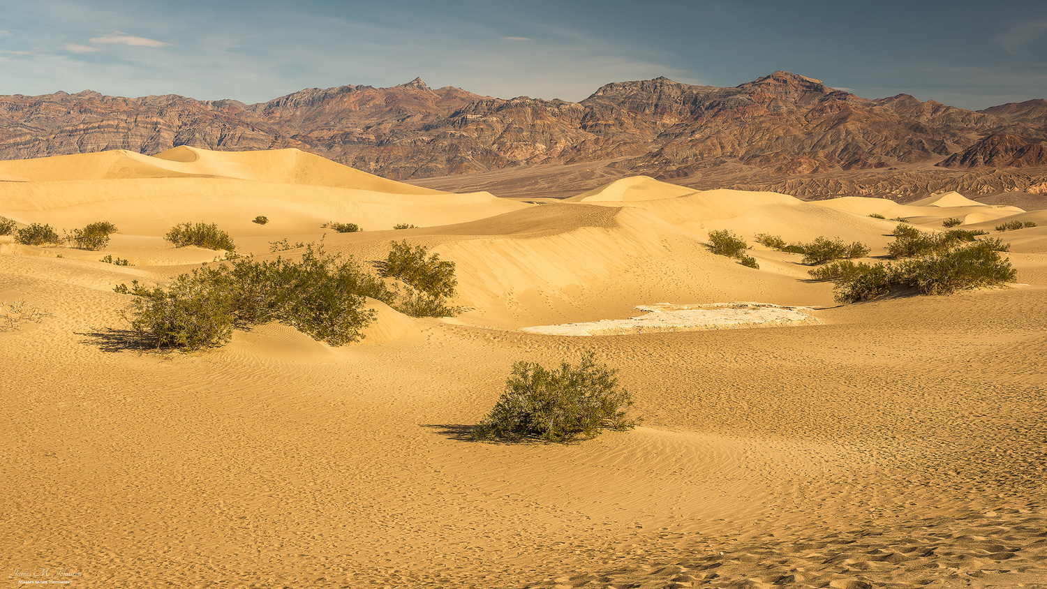 Mesquite Flats Sand Dunes by James Johnston