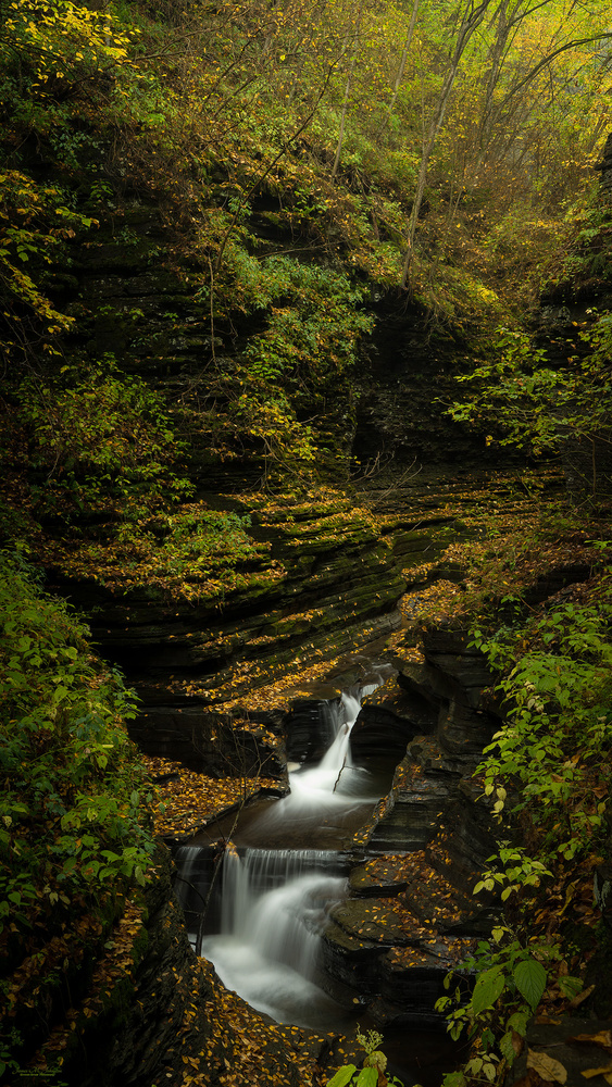 Diamond Falls by James Johnston