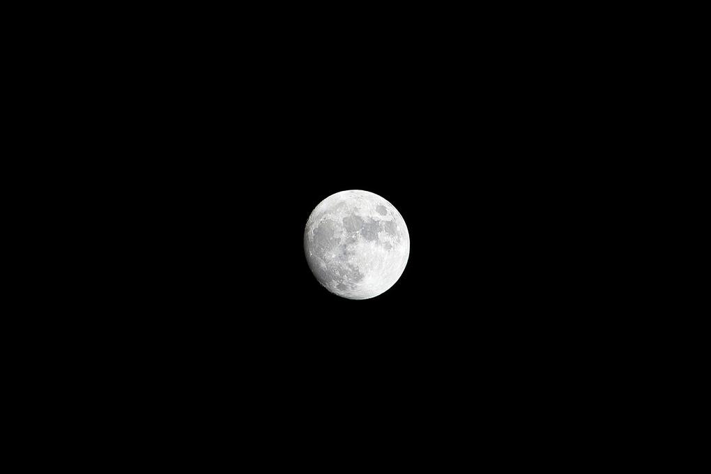 Luna by Doug Jones