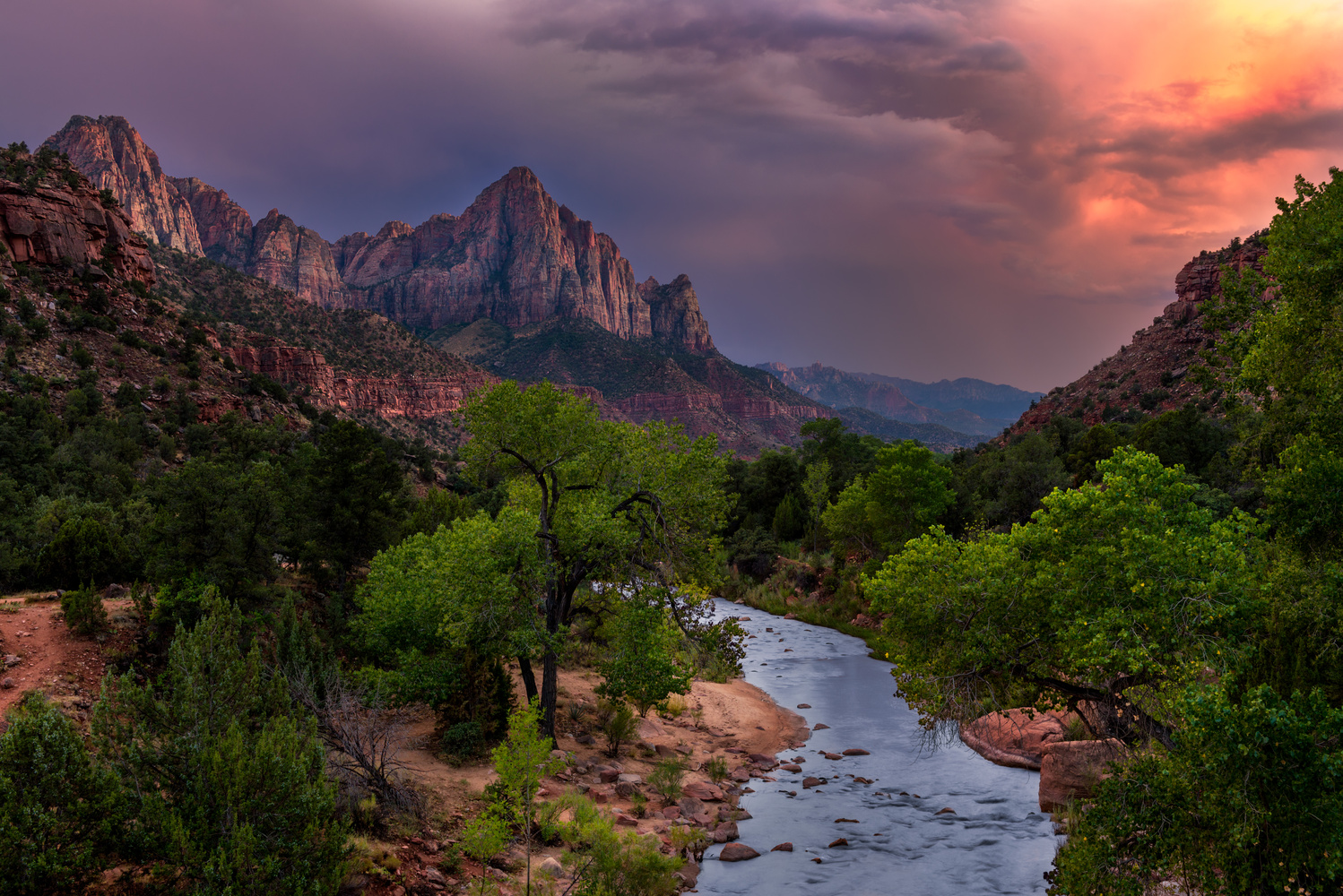 The Watchman by Chris Ward