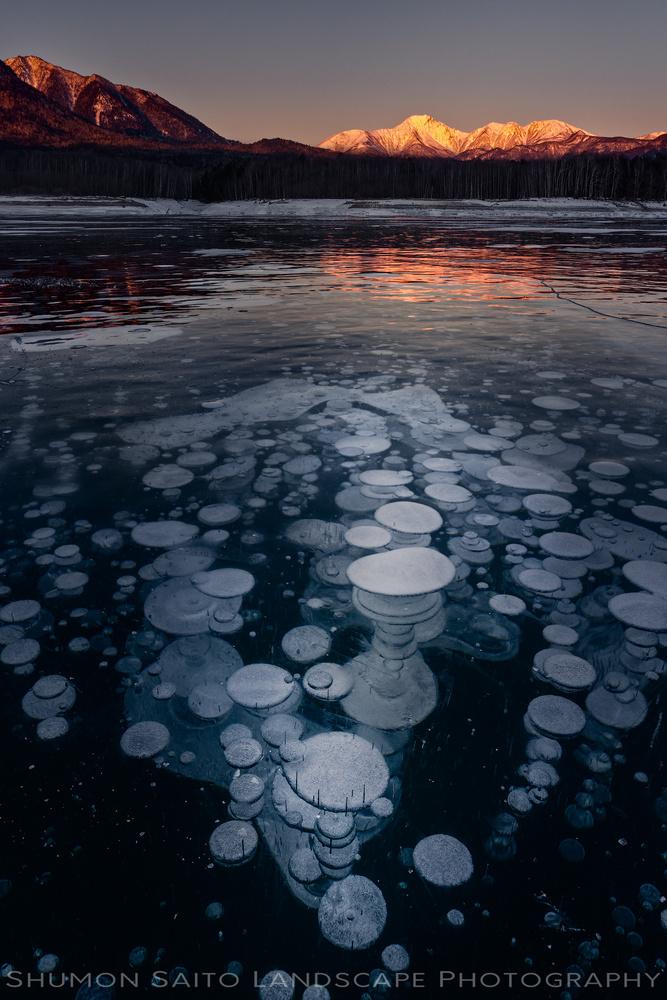 Bubbles by Shumon Saito