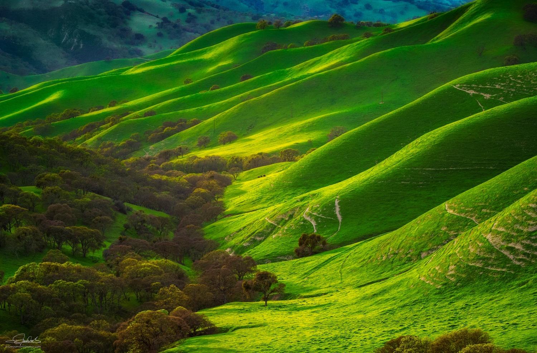 Rolling hills by Shumon Saito