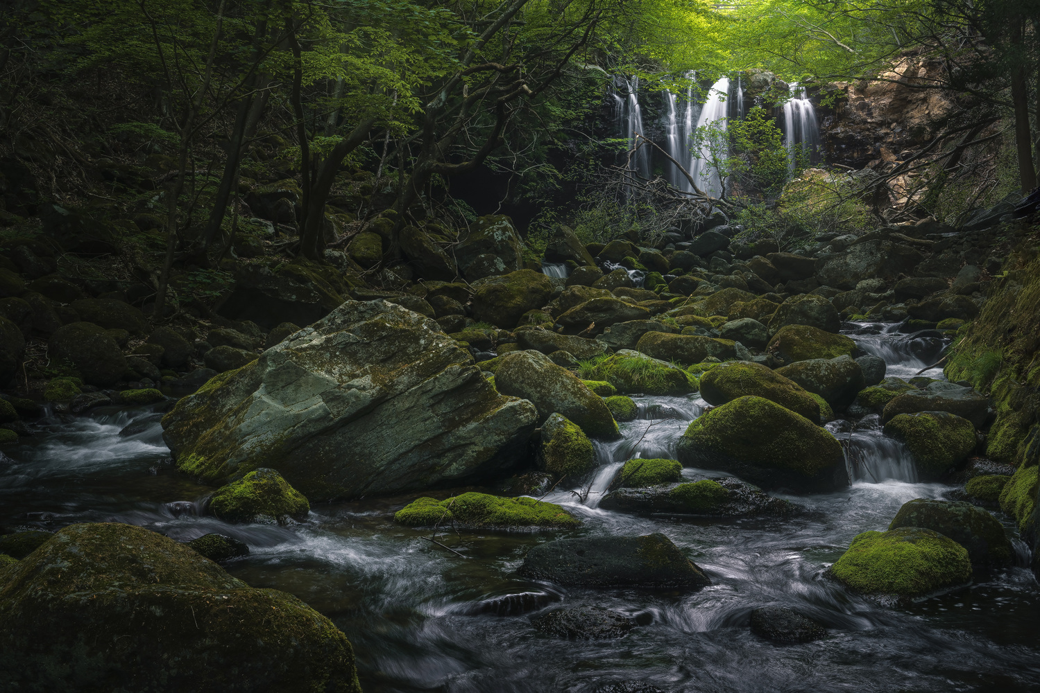 Waterfall in the forest by Shumon Saito