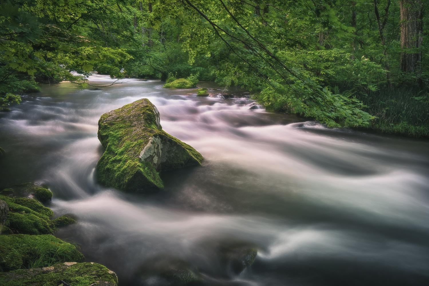 Flowing by Shumon Saito