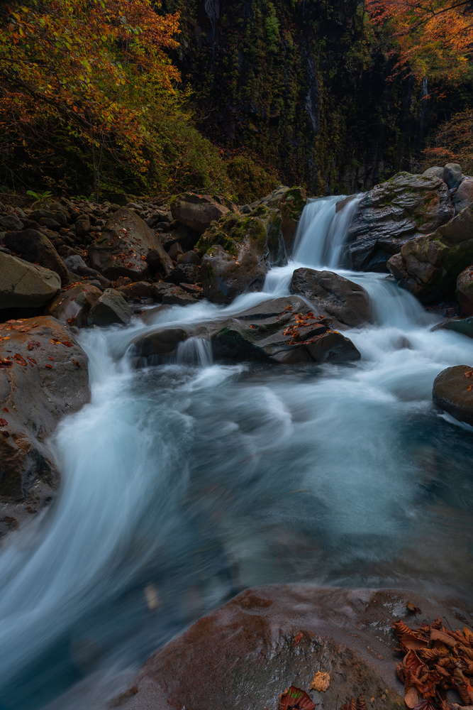 Swell and Fall Colors by Shumon Saito