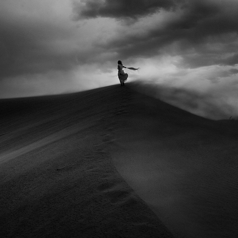 Following you by Shahin Hemmati