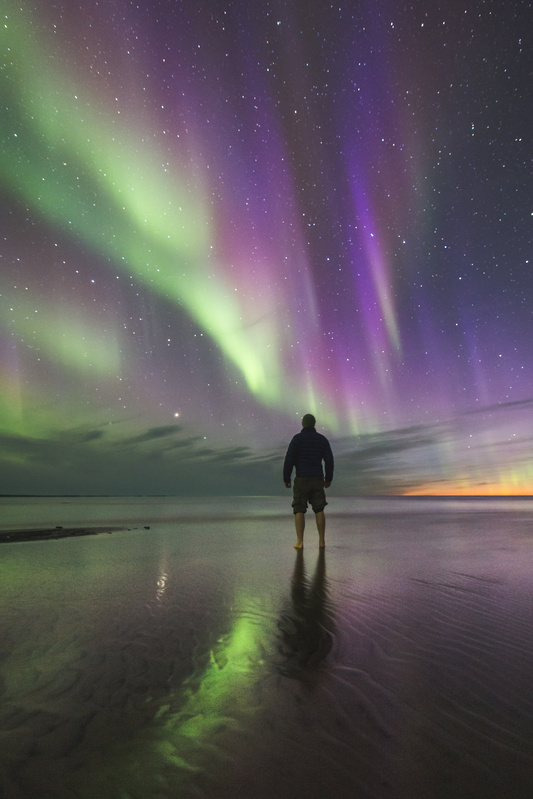 Marvelling at the midnight sky by Adam Hill
