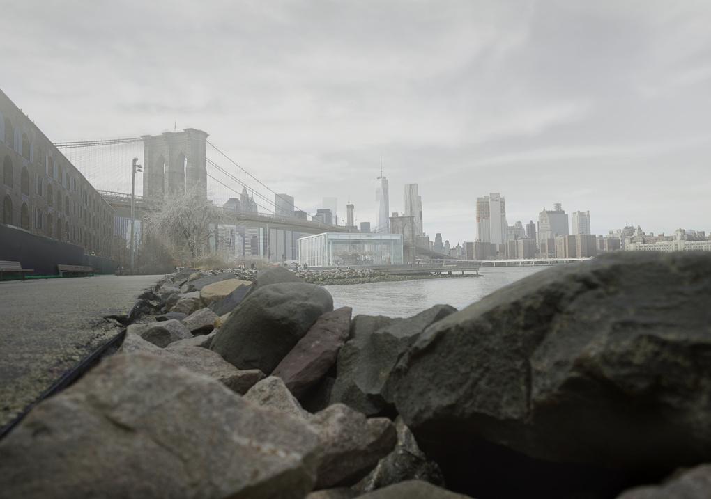 11AM Brooklyn by Cole Bielecki
