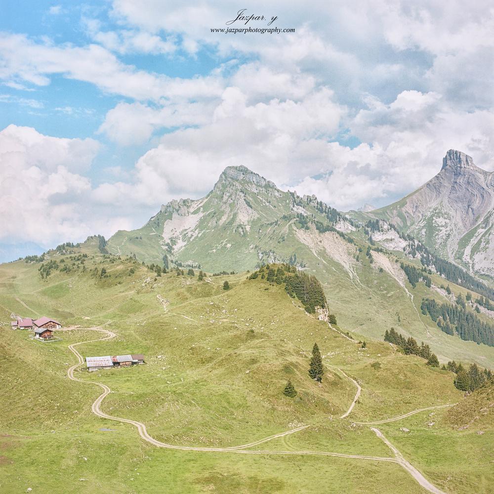 Schynige Platte by Jazpar Yeo