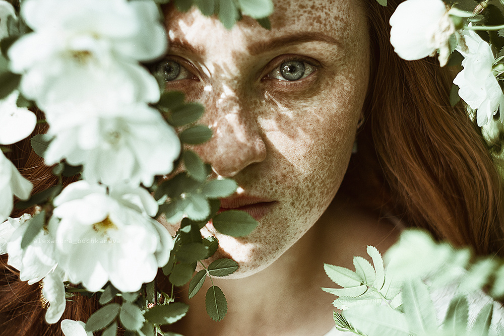 Blossom by Alexandra Bochkareva