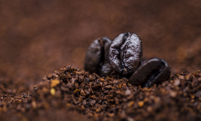 Coffee Mountain by Jonathan Klempa
