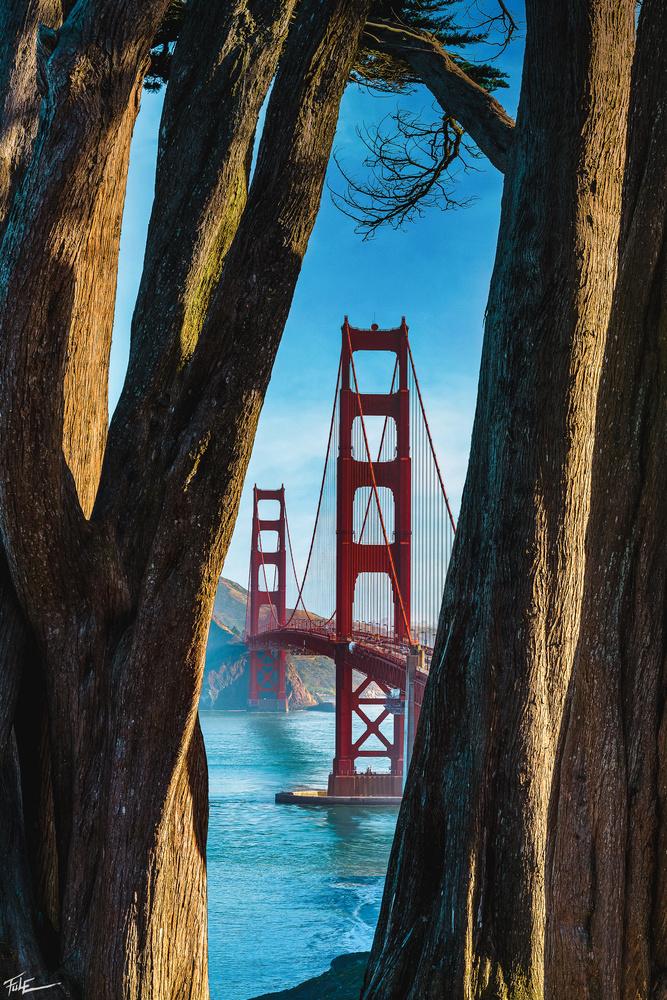 Golden Gate Bridge by Phuoc Le