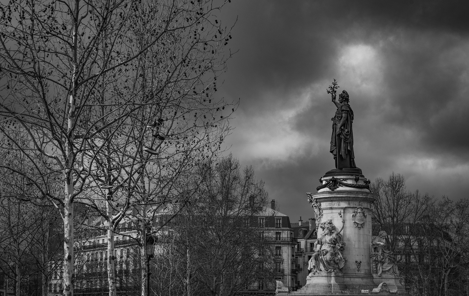 Liberty by Darcy Brown