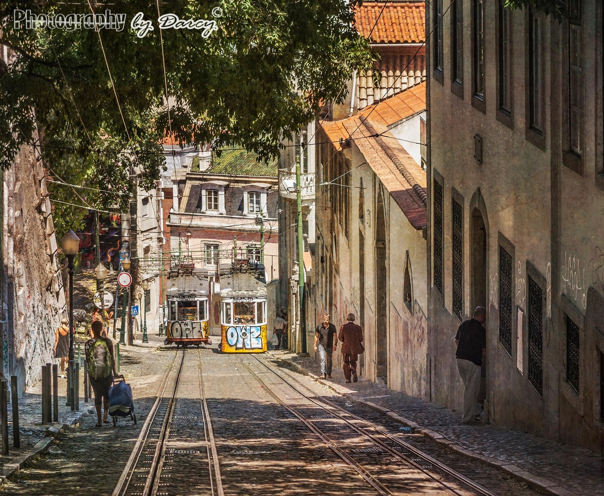 Trams that pass in the day by Darcy Brown