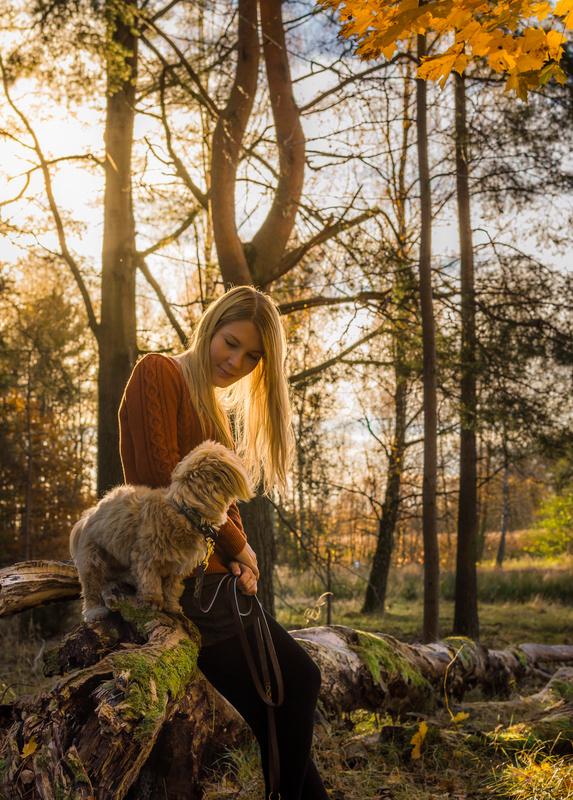 Friendship For Life by Naeim Karimi